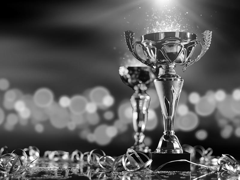 Referenzenuebersicht Auszeichnungen